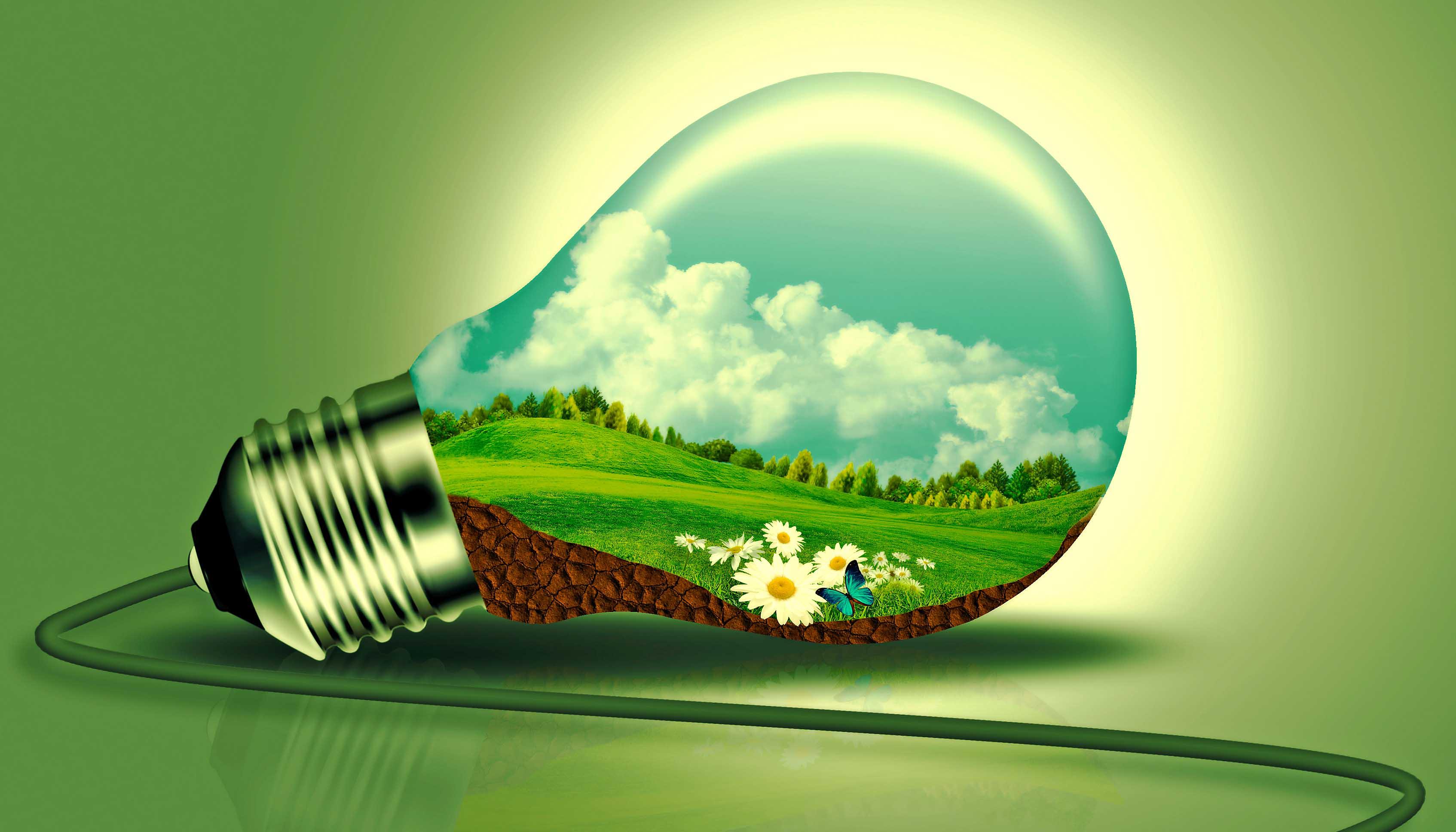nothing new about sustainability native renewable energy blog