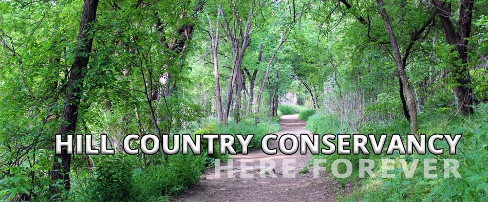 conserving land